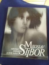 Miloslav Stibor - bazar
