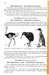 Zoologie všeobecná a přehled živočišné soustavy - bazar
