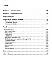 Anglicko-český ekonomický slovník s výkladem a výslovností - bazar