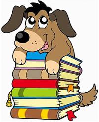 Co jsou pro Vás knihy  ?