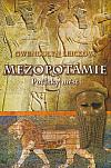 Mezopotámie: Počátky měst