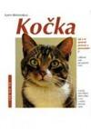 Kočka: jak o ni správně pečovat a porozumět jí
