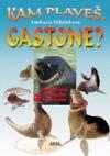 Kam plaveš, Gastone?