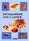 Encyklopedie ulit a lastur