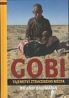 Gobi - tajemství ztraceného města