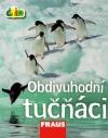 Obdivuhodní tučňáci
