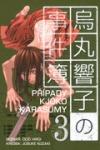 Případy Kjóko Karasumy 3 obálka knihy