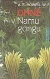 Ohně v Namugongu