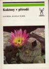 Kaktusy v přírodě