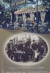 Zmizelý svět brněnských kaváren obálka knihy