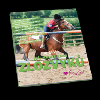 Jak zbavit koně zlozvyků