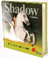 Shadow - Kůň, který se vynořil ze stínu
