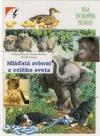 Mláďatá zvierat z celého sveta (Malá encykl. prírody)