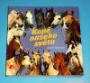 Koně našeho světa