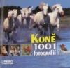 Koně: 1001 fotografií
