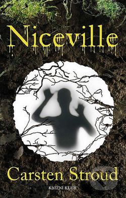 Niceville - temný a děsivý román