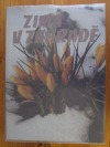 Zima v zahradě obálka knihy