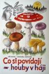 Co si  povídají houby v háji