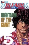 Bleach 5 - Rightarm of the giant