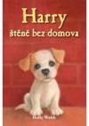 Harry, štěně bez domova