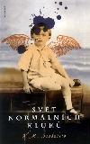 Svět normálních kluků obálka knihy