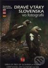 Dravé vtáky Slovenska vo fotografii