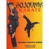 Bojovník karate Průvodce bojovým uměním