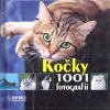 Kočky: 1001 fotografií