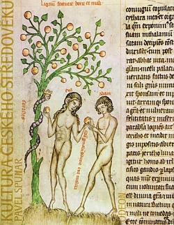 Kultura českého středověku obálka knihy