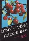 Třešně a višně na zahrádce