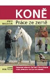 Koně - Práce ze země obálka knihy
