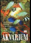 Akvárium: všechno o akvaristice: ryby, rostliny, zařízení akvária