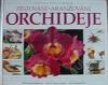 Orchideje: Pěstování - Aranžování