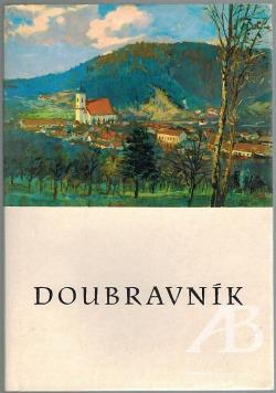 Doubravník obálka knihy