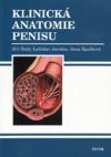 Klinická anatomie penisu
