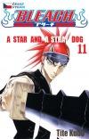 Bleach 11: A Star and a Stray Dog