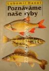 Poznáváme naše ryby