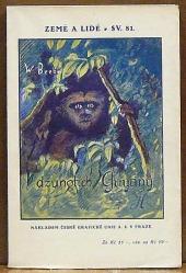 V džunglích Guyany