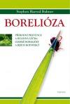 Borelióza