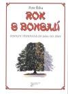 Rok s bonsají - postupy pěstování od jara do zimy