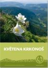 Květena Krkonoš