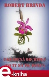 Ukradená orchidej obálka knihy