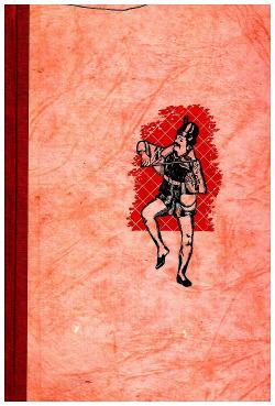 Paměti Augustina Bergra obálka knihy