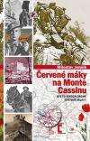 Červené máky na Monte Cassinu - Byl to Verdun druhé světové