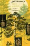 Jehličnany lesů a parků
