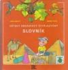 Dětský obrázkový čtyřjazyčný slovník