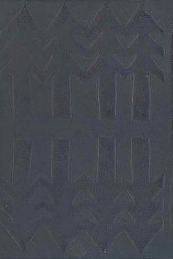Šumavské rapsódie obálka knihy