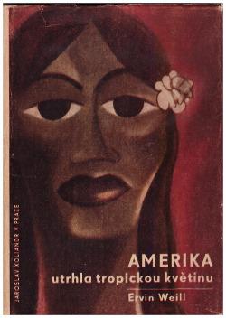 Amerika utrhla tropickou květinu obálka knihy