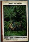 V jihoamerických pralesích