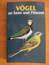 Vögel an Seen und Flüssen